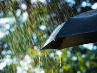 CMIB insurance | Weather forecast